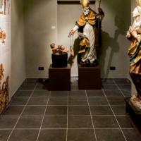 Museo Kronos