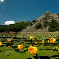 Lago Bino - foto Ziotti