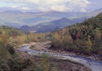 Da Rompeggio a Selva di Ferriere e Pertuso