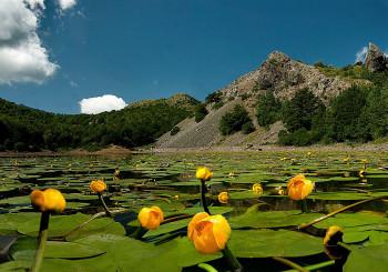 Lago Moo e Lago Bino