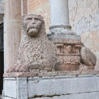 Leone stiloforo Duomo di Piacenza